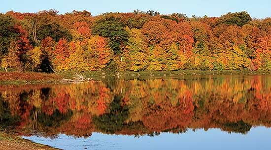 Driving west towards Buffalo, the rising sun highlighted the changing colors of the leaves. On the morning of Wednesday, October 6, the combination of all the hues, the stillness of the water, and the mirrored reflection was just too beautiful to...